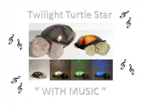 twilight turtle projection